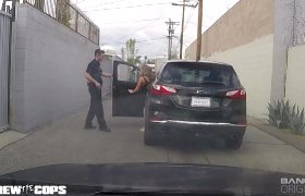 Richelle Ryan Gets Pulled Over